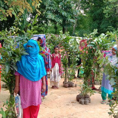 9. Tree plantation 2020-3